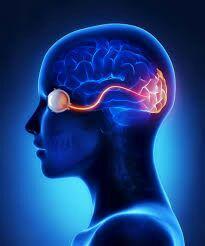 تاری دید – اختلال بینایی